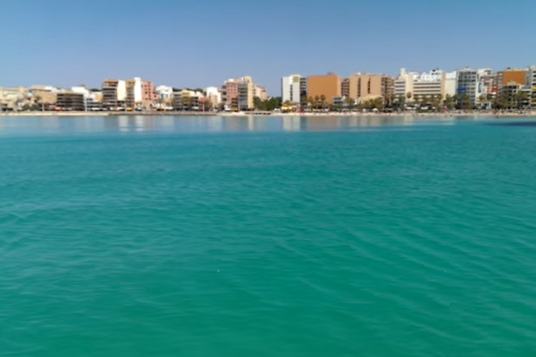 Skipperfox® Palma de Mallorca